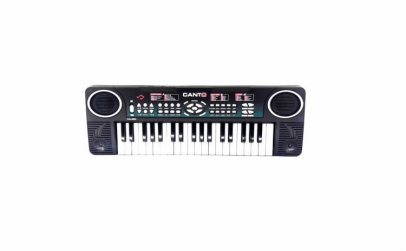 Orga electronica cu microfon