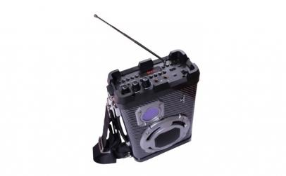 Boxa activa, bluetooth, radio, USB, AUX