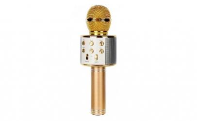 Microfon Karaoke Wireless cu Bluetooth