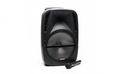 Boxa Portabila + Microfon