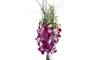 Buchet de 5 orhidee dendrobium mov