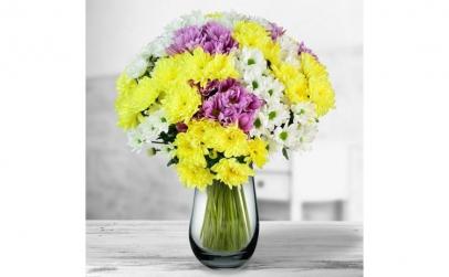 Buchet de 25 crizanteme multicolore