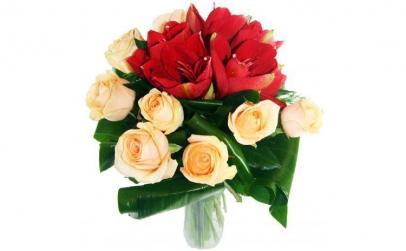 Buchet de amarilis rosu si trandafiri