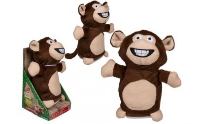 Maimuta interactiva