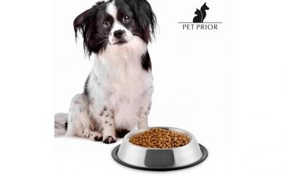 Castron de Hrana pentru Caini Pet Prior