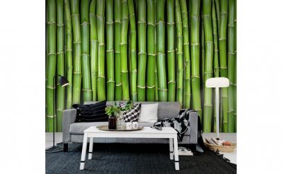 Fototapet Bambus R11821