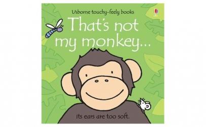 Aceasta nu e maimuta mea