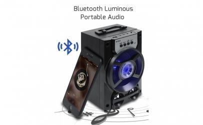 Boxa portabila cu radio si bluetooth