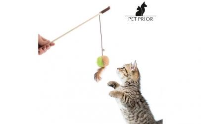 Jucarie pentru Pisici Pet Prior