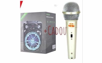 Boxa Bluetooth + Cadou Microfon