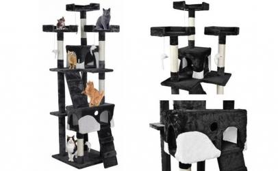 Ansamblu de joaca pentru pisici, cu 2