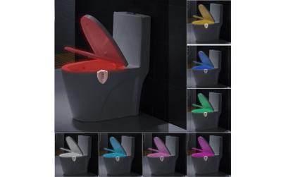 LED UV toaleta cu sterilizare,FizioLight