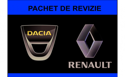 Revizie Dacia Logan