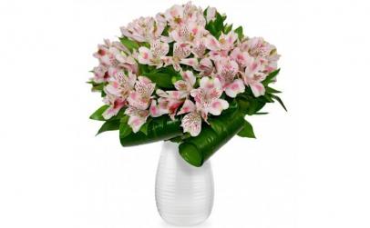Buchet de 11 alstroemeria roz