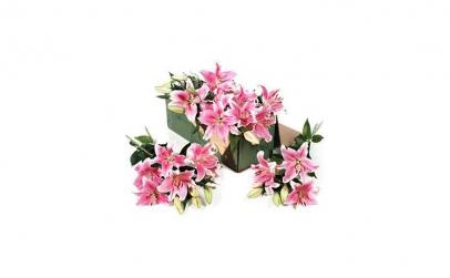 Buchet de 55 crini imperiali roz