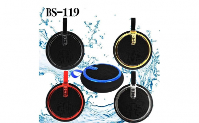 Boxa portabila Wireless BS-119