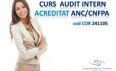 Curs auditor intern