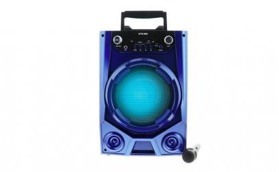 Boxa Portabila 20 Watt Karaoke