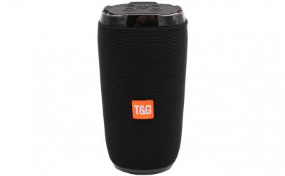 Boxa portabila  T&G