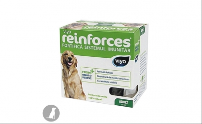 Viyo Reinforces, Adult, 7 x 30ml