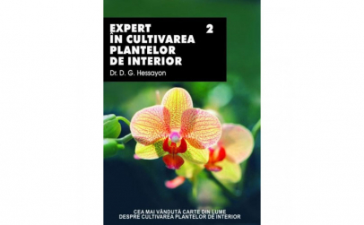 Expert In Cultivarea Plantelor De