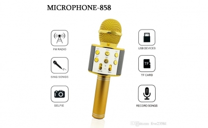 Microfon Wireless profesional
