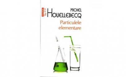 Particulele elementare - Michel