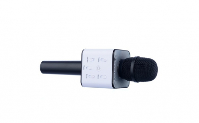 Microfon Karaoke Wireless cu Bluetooth