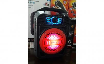 Boxa portabila Karaoke