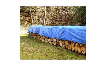 Prelata albastra, 8 x 10 m