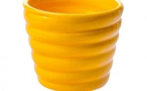 Ghiveci Ceramica la 10 RON in loc de 25 RON