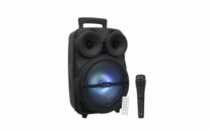 Boxa portabila 100W KTS 1089C cu bass