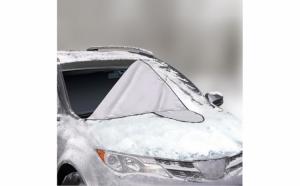 Parasolar auto pentru parbriz
