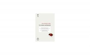Un roman sentimental, autor Alain Robbe Grillet