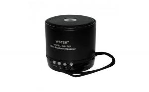 Mini boxa portabila, Bluetooth