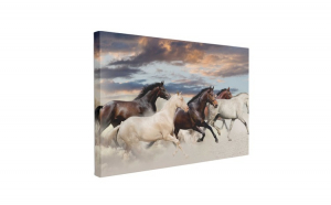 Tablou Canvas Five Horse Run, 50 x 70 cm, 100% Bumbac