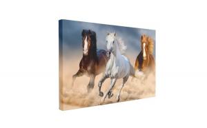 Tablou Canvas Three Horse in Desert, 40 x 60 cm, 100% Poliester