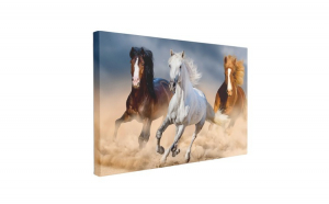 Tablou Canvas Three Horse in Desert, 60 x 90 cm, 100% Poliester