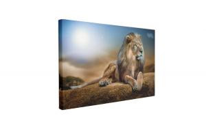 Tablou Canvas Regele Leu, 50 x 70 cm, 100% Poliester