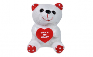 Ursulet de plus alb cu inima, Ziua indragostitilor, Voi doi