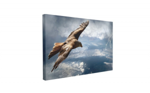Tablou Canvas Vultur Deasupra Furtunii, 70 x 100 cm, 100% Poliester