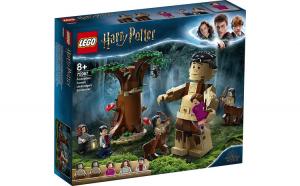 LEGO HARRY POTTER  PADUREA INTERZISA