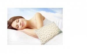 Set 2 Perne din Puf de Gasca, pentru confort in timpul somnului, acum la doar 79 RON in loc de 160 RON