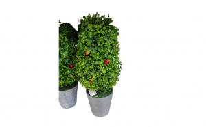 Copac Artificial