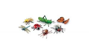Set insecte