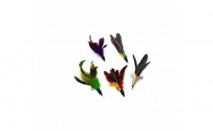 Set de 5 pene inlocuitoare pentru undita retractabila pentru pisici, Aexya, multicolor