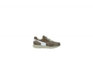 Sneakers Cesare