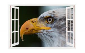 Sticker decorativ, Fereastra 3D, Vultur, 85 cm, 274STK
