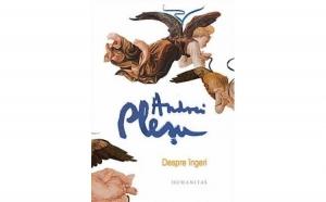 Despre ingeri , autor Andrei Plesu