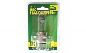 Bec auto cu halogen H4 RoGroup, 12V,